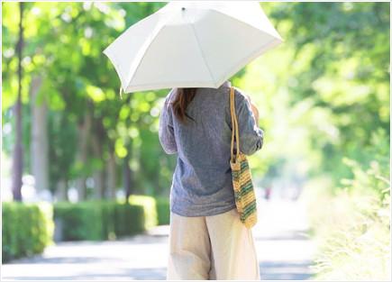 街路樹の中日傘を差して歩く女性